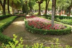 00426M Jardines del Prado