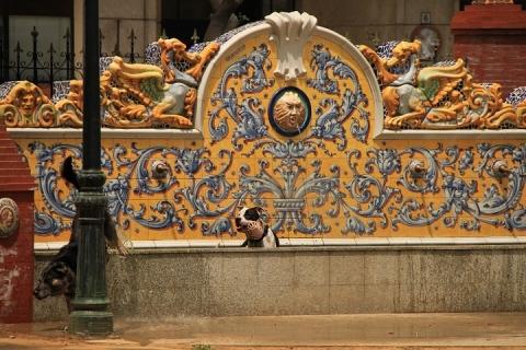 00420 Jardines del Prado