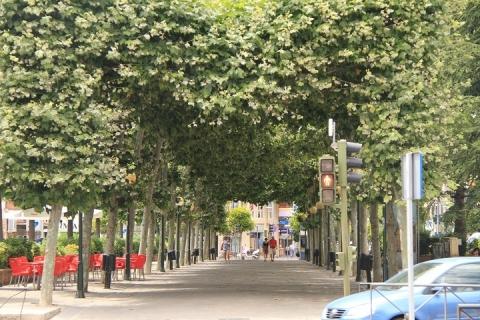 00437 Jardines del Prado