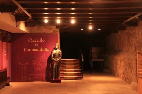 00903 Castillo de Fuensaldaña