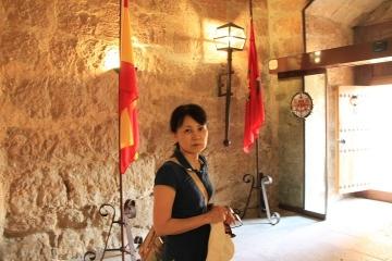 00905 Castillo de Fuensaldaña