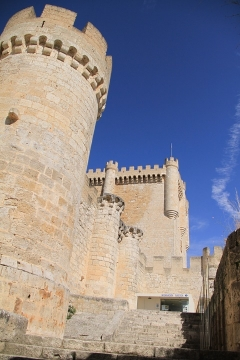 01233 Castillo de Penafiel