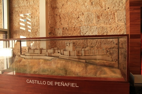 01235 Castillo de Penafiel