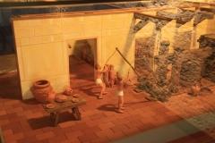 01241 Museo del Vino en Castillo