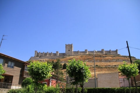 01330 Castillo de Panefiel