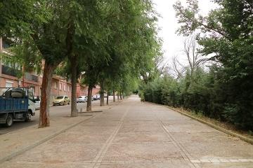 01544M Medina del Campo