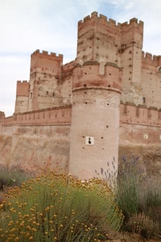 01596M Castillo de la Mota