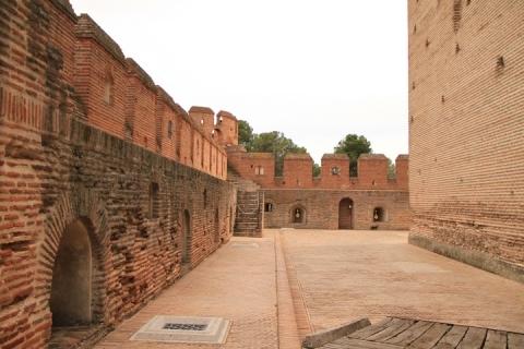01704 Castillo de la Mota