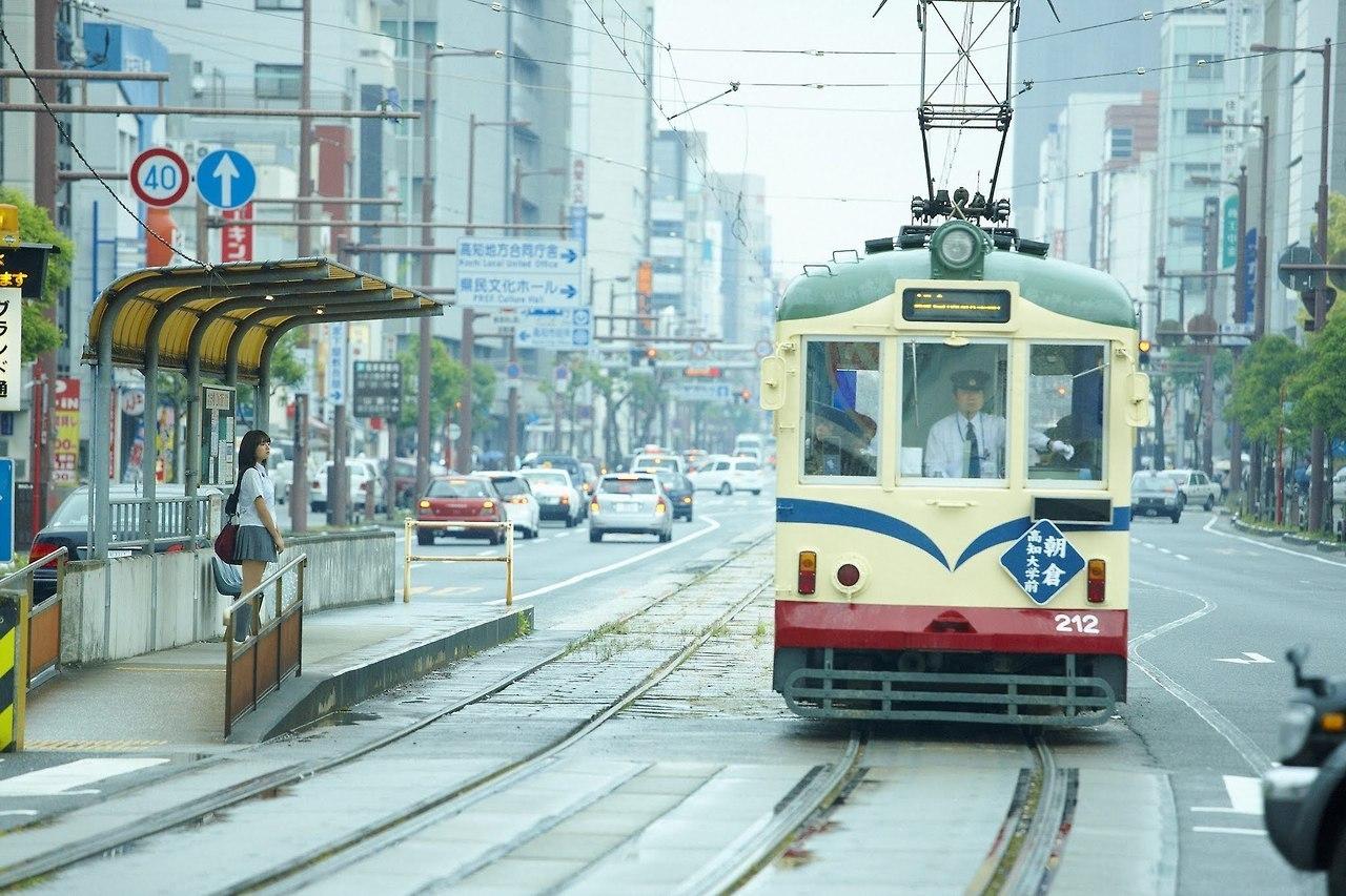 gs_sinozakiai_002_001.jpg