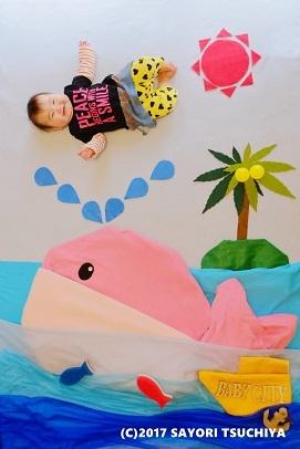 クジラの潮吹 (C) - コピー