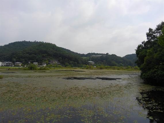 2017_07_15-16_京都_121_2017_07_20