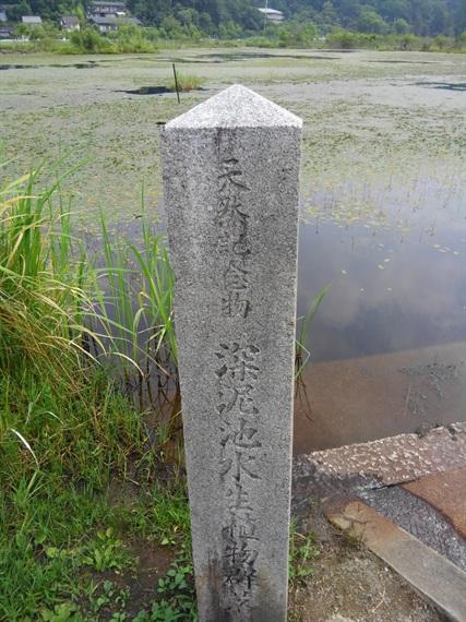 2017_07_15-16_京都_122_2017_07_21