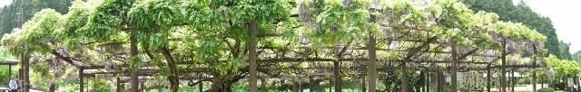 D90 050 パノラマ写真 (640x102)