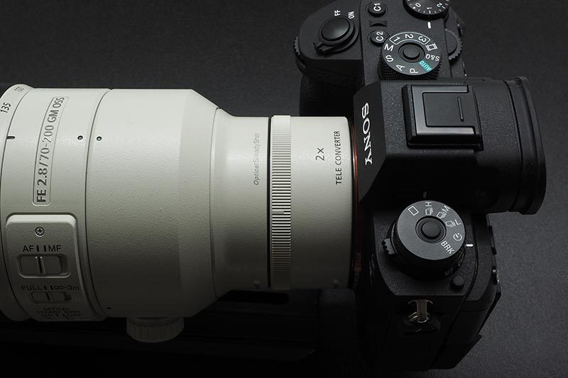 P6040004.jpg
