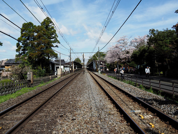 kitaEnkakuji (4)