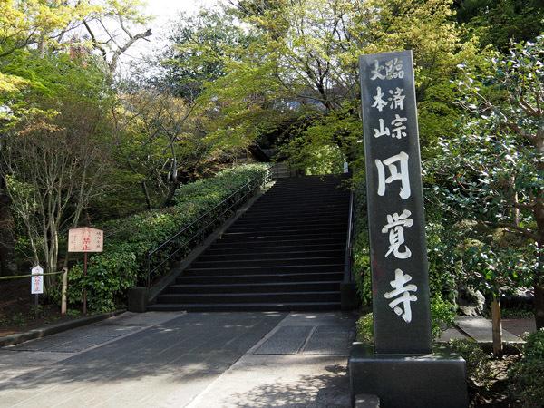 kitaEnkakuji (5)