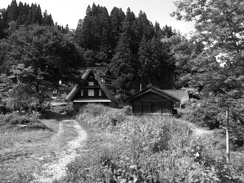 gakayamaD01 (2)