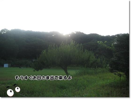 IMG_0326-2_20170721144711c44.jpg