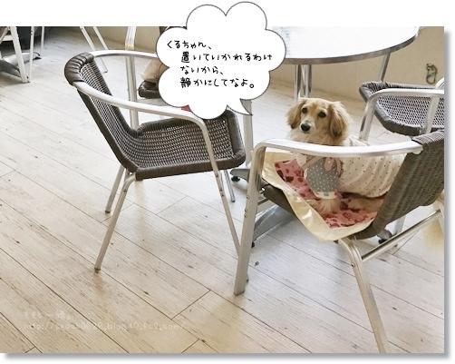 IMG_8363_copy.jpg