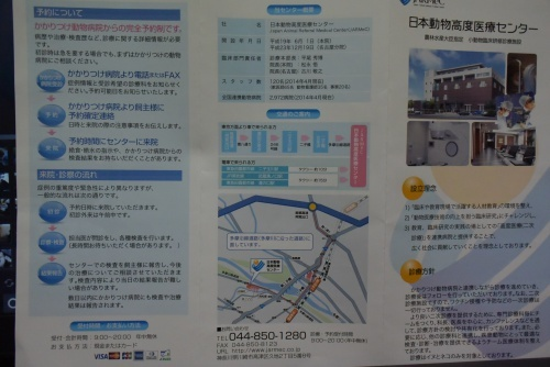 DSC_7639a.jpg