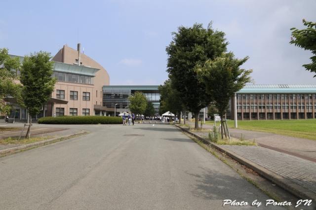 open campus17-