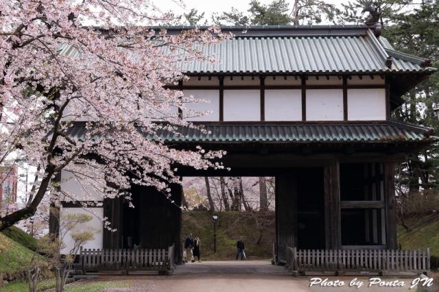 hirosaki1704A-0042.jpg