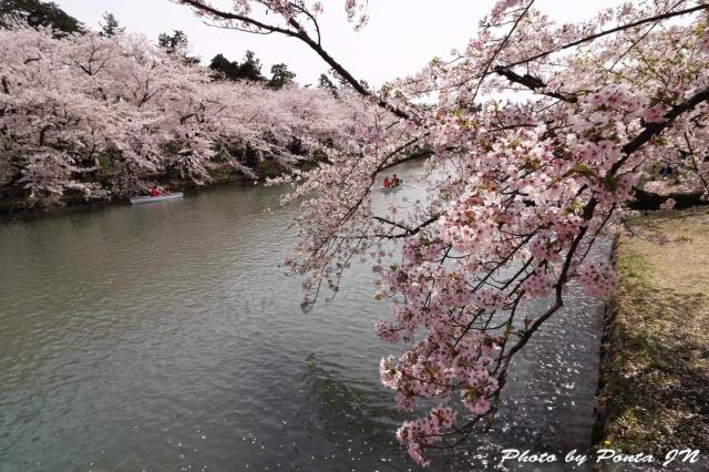 hirosaki1704A-0066.jpg