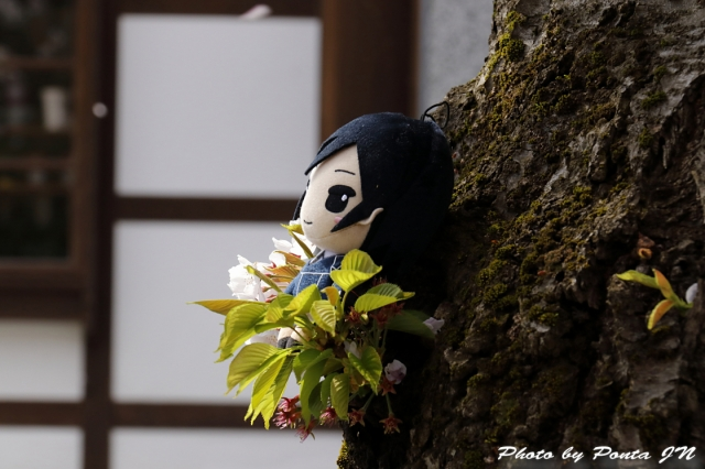 hirosaki1704A-0100.jpg