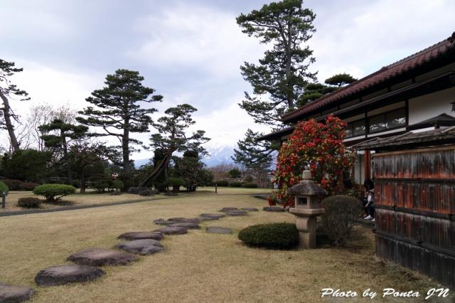 hirosaki1704A-0115.jpg