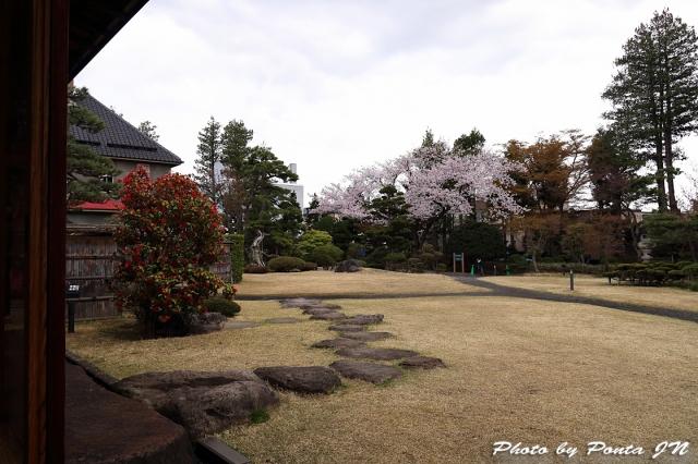 hirosaki1704A-0127.jpg