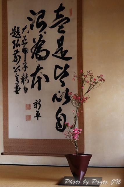 hirosaki1704A-0129.jpg