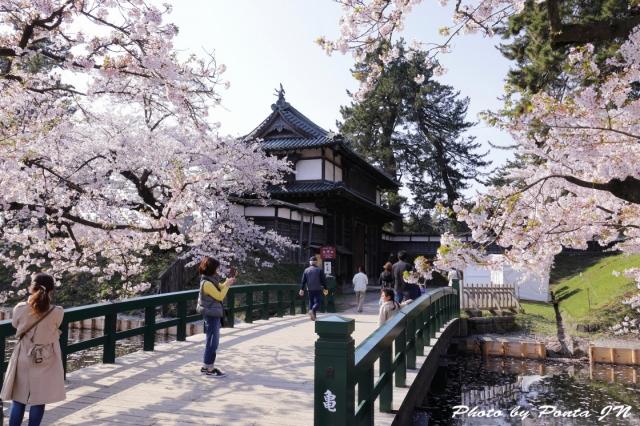 hirosaki1704B-0001.jpg