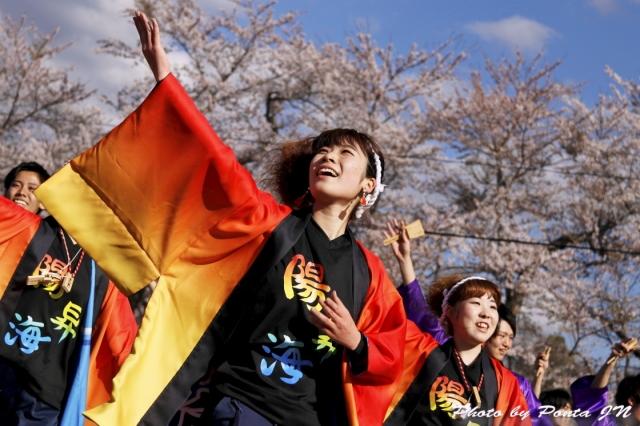 yosakoi1704-0106.jpg