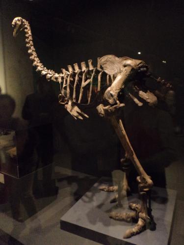 大英博物館展04_convert_20170528191211