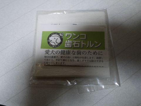 P1190318.jpg
