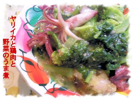 やりいかと鶏肉と野菜のうま煮