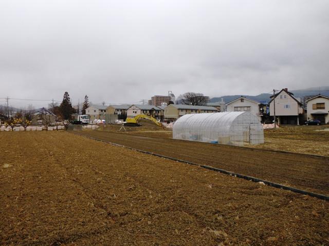 井川城跡 (21)