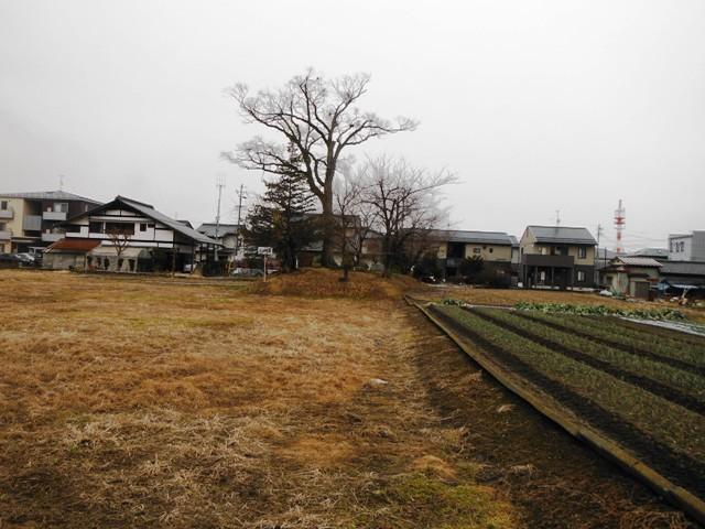 井川城跡 (18)