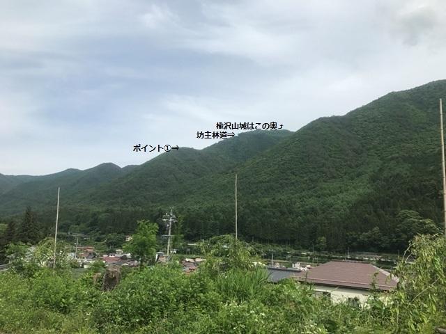 楡沢山城 (110)