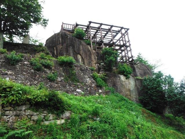 苗木城 (98)