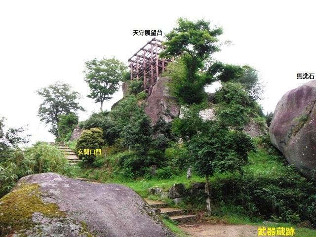 苗木城 (107)