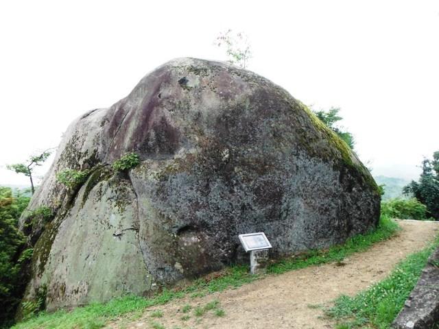 苗木城 (113)