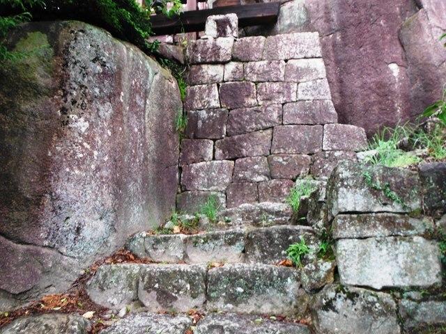 苗木城 (115)