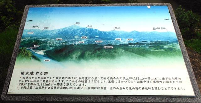 苗木城 (123)