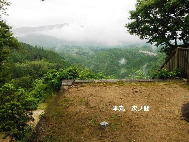 苗木城 (133)
