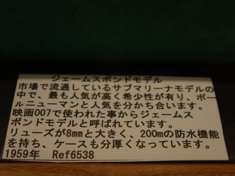 06IMG_3729 (480x360)