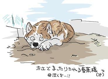 はるなちゃん3