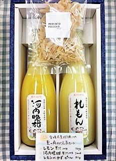 20170619夏の爽やか元気セット