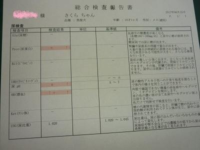 blog11895.jpg