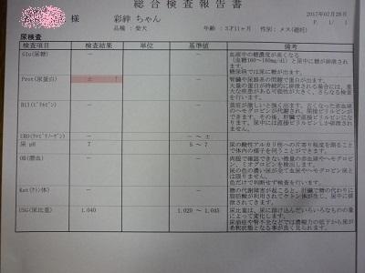 blog12071.jpg